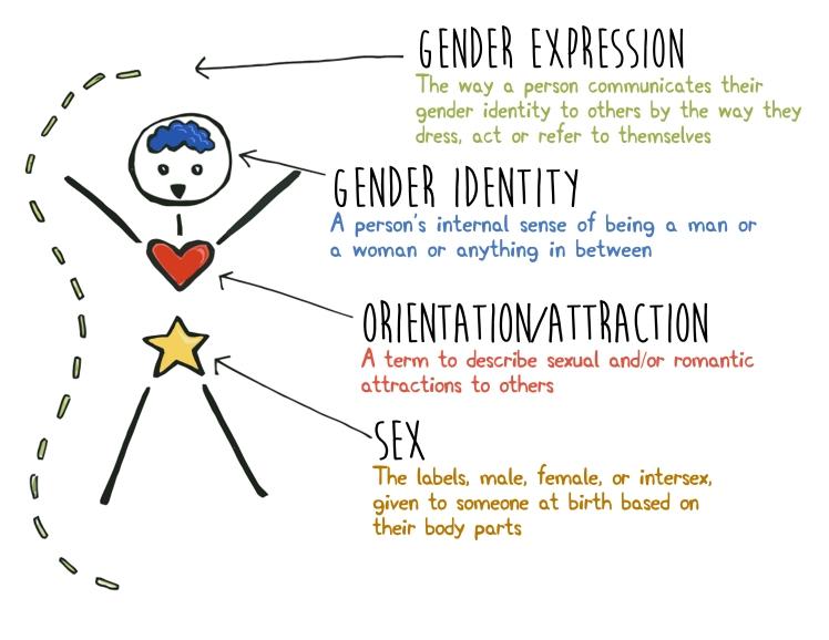 HHB Gender Orientation Sex